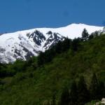 新緑と三ッ岩岳 標高2065メートル